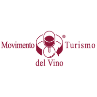 logo MTV ITALIA