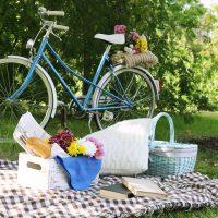pic nic bicycle