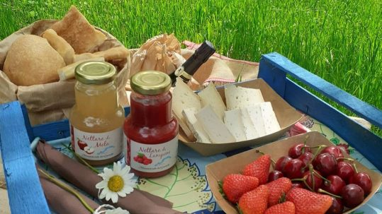 pic nic experience lombardia