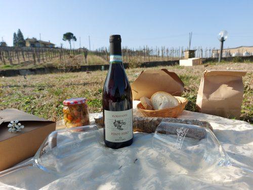 Pic nic con degustazione di vini