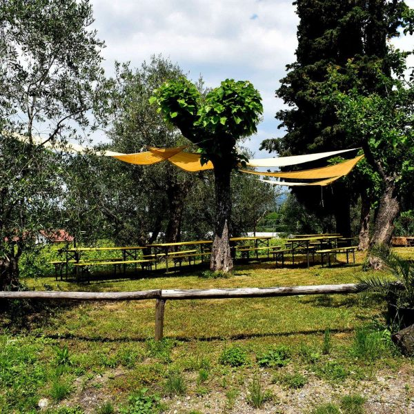 pic nic toscana lucca